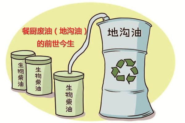 九龙坡餐厨废油(地沟油)的前世今生